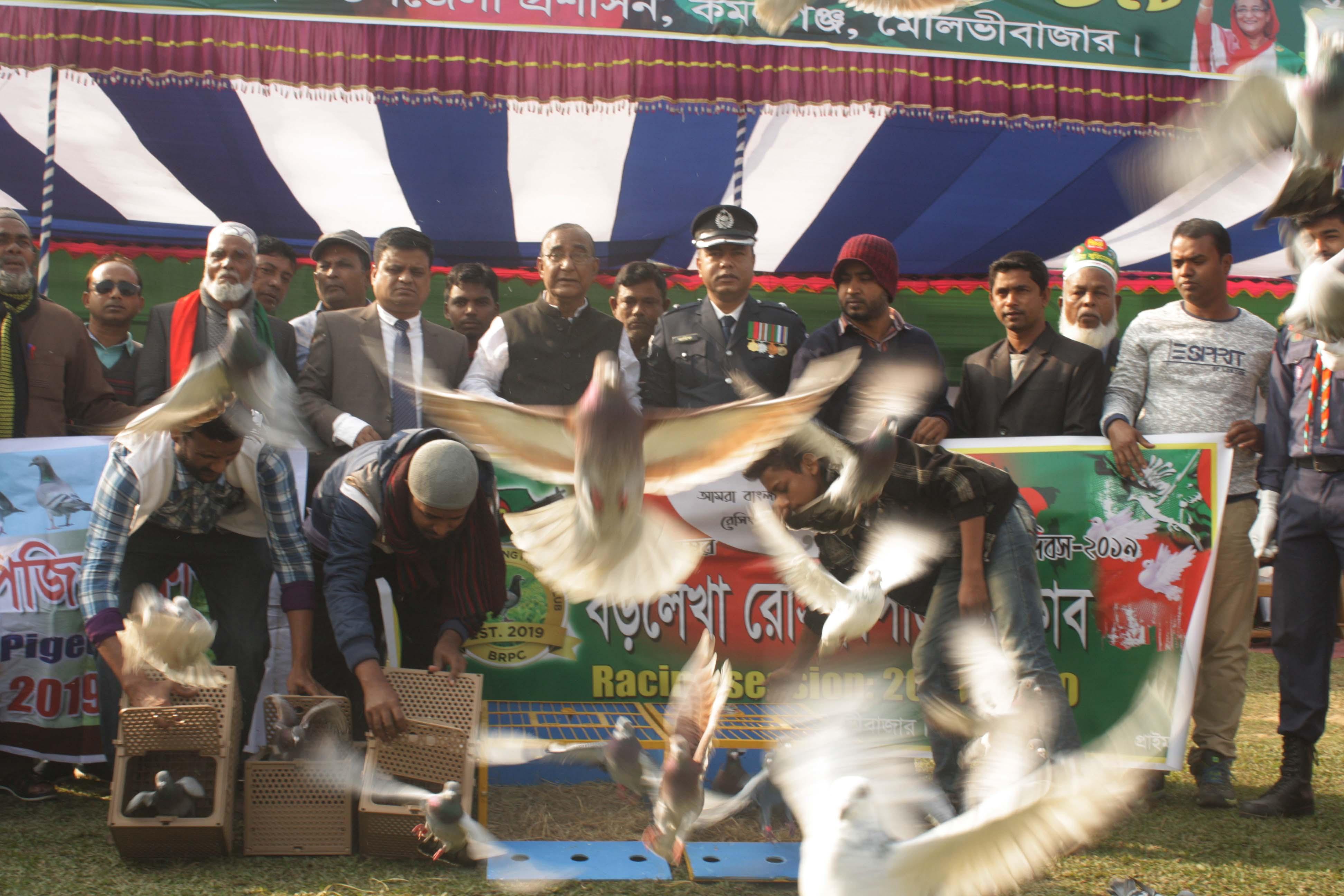 কমলগঞ্জে বড়লেখা রেসিং পিজিয়ন ক্লাবের উদ্যোগে কবুতর রেস প্রতিযোগীতা অনুষ্টিত