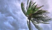 ঘূর্ণিঝড় 'আম্ফান' ১৯ মে আঘাত হানতে পারে, প্রস্তুত সরকার